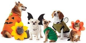 Pet Parade & Costume Contest for Dogs, Cats & Birds @ Raveneaux Country Club | Spring | Texas | United States